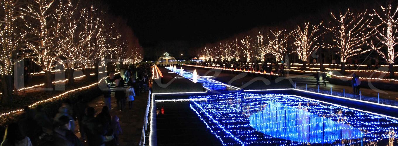 2010-2011 | Japan | Tokyo | Christmas